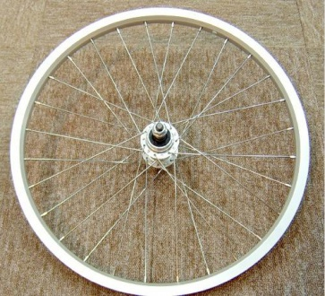 Dahon Wobbegong Rear wheel Set