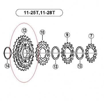 Shimano CS-6700 Sprocket Part 21-24-28T Y1YX98060