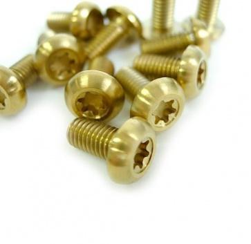 Tiparts Disc Rotor Titanium Bolts 12pcs gold M5x10